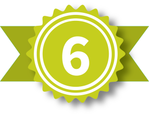 Badge-6