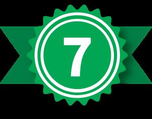 Badge-7