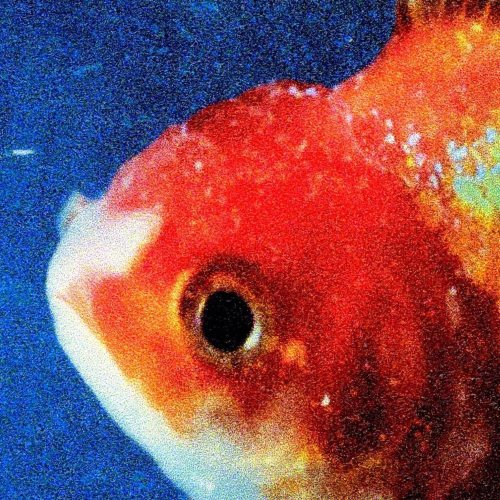 big fish theory vince staples